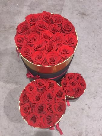 Luxury preserved roses