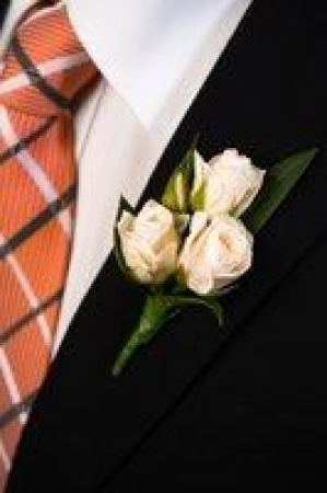 Buttonhole Cecil Brunner Rose