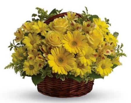 PA57 Basket Of Sunshine