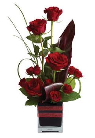 Rose Romance PR30