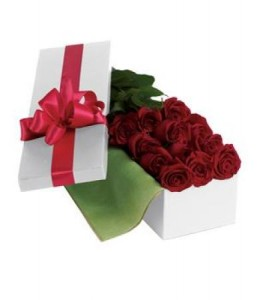 Roses For You PR24
